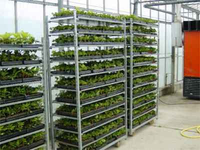 Trolley of cuttings