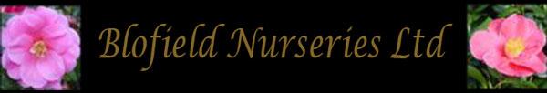 Blofield Nurseries Ltd